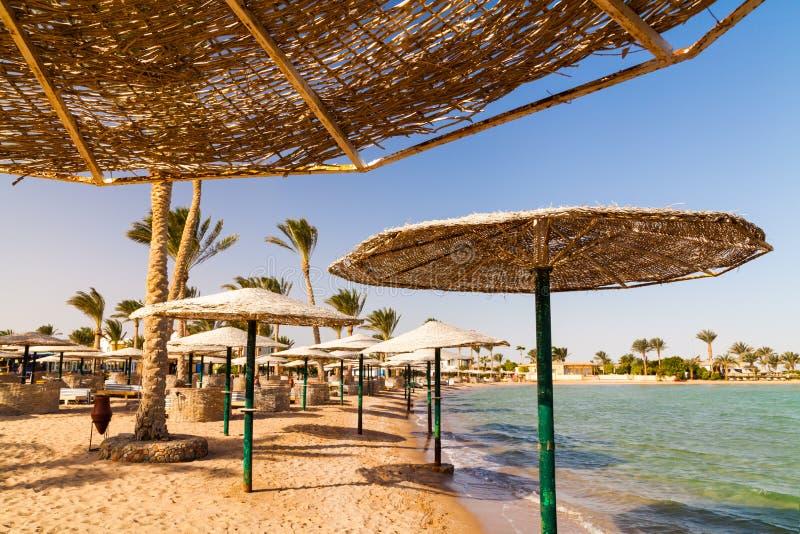 Schilderachtige meningen van het tropische strand met palmen, parasols en sunbeds royalty-vrije stock afbeelding
