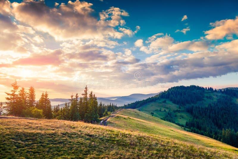 Schilderachtige ochtendscène in de Karpatische bergen stock afbeeldingen