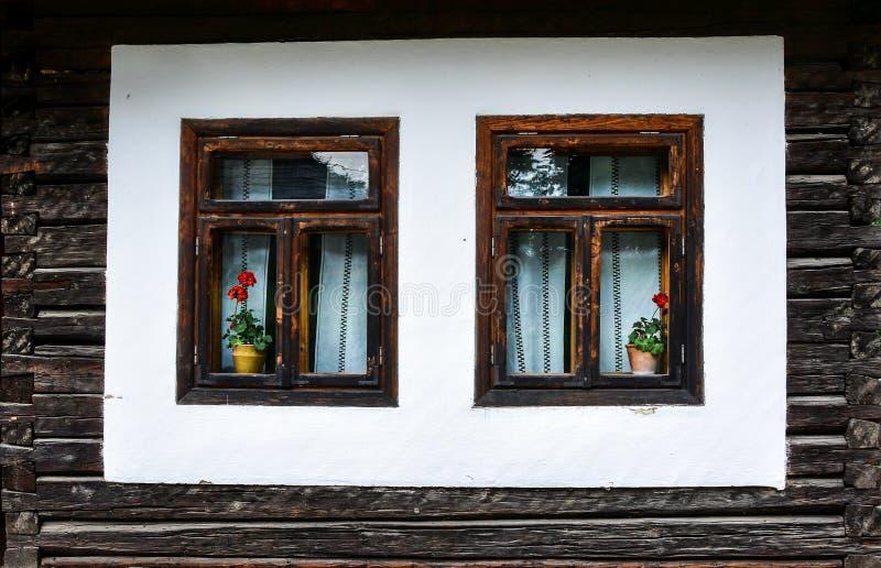 Schilderachtige vensters met bloemen stock afbeeldingen