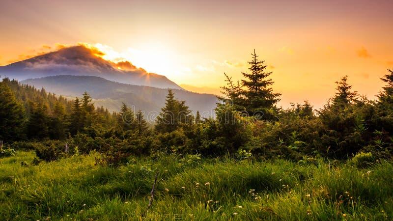 Schilderachtige zonsondergang in de bergen, landschap Karpatisch, de Oekraïne royalty-vrije stock foto