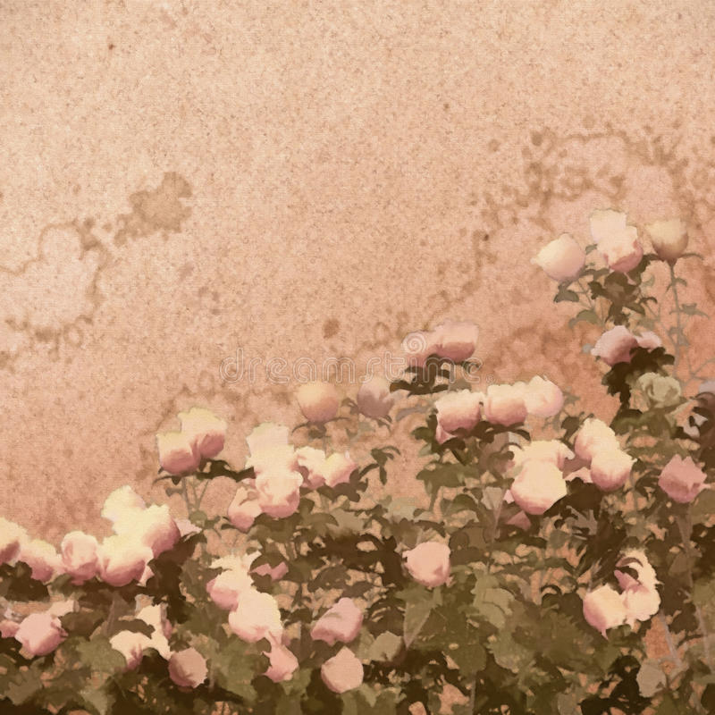 Schilderende Rose Bush stock illustratie