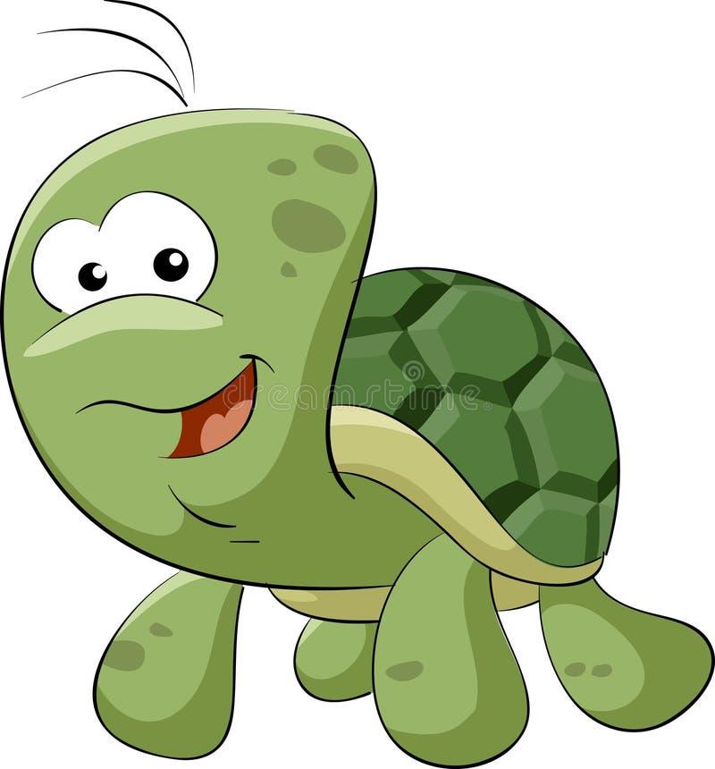 Schildkröte vektor abbildung