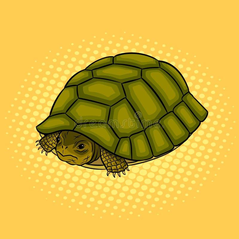 Schildkröte, die in der Oberteilpop-arten-Vektorillustration sich versteckt vektor abbildung