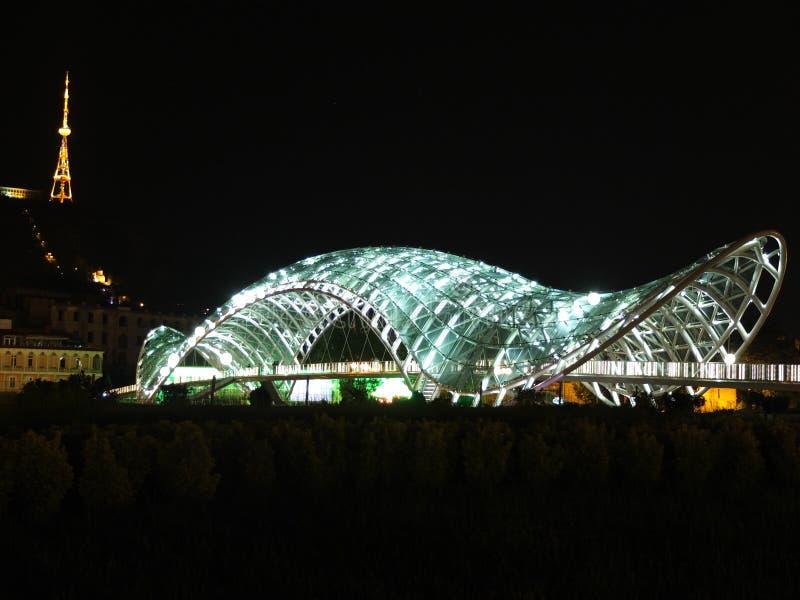 Schildkrötenbrücke stockbild
