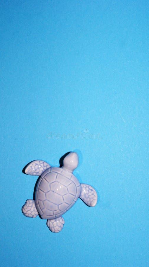 Schildkrötenfigürchen auf einem blauen Hintergrund stockfotos