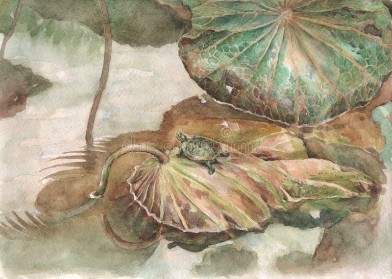 Schildpad en lotusbloembladerenwaterverf het schilderen