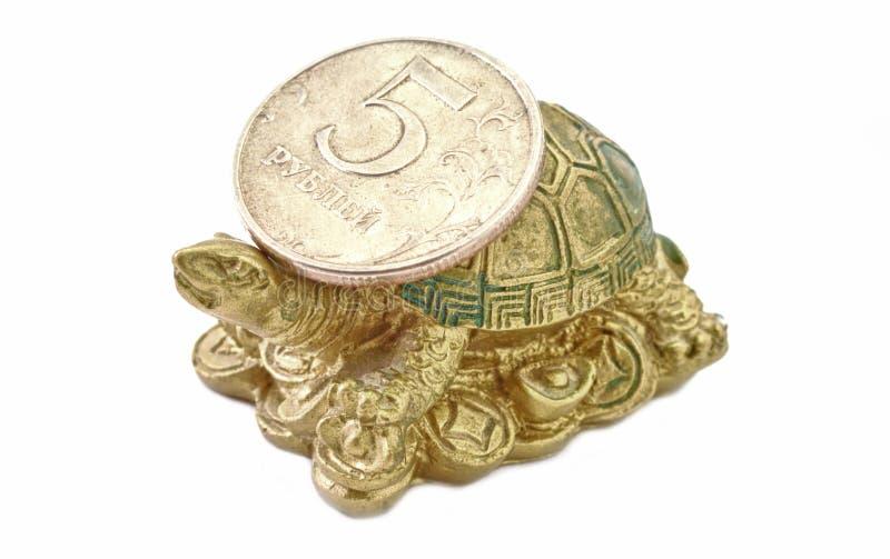 Schildpad met de Roebel van het Muntstuk royalty-vrije stock fotografie