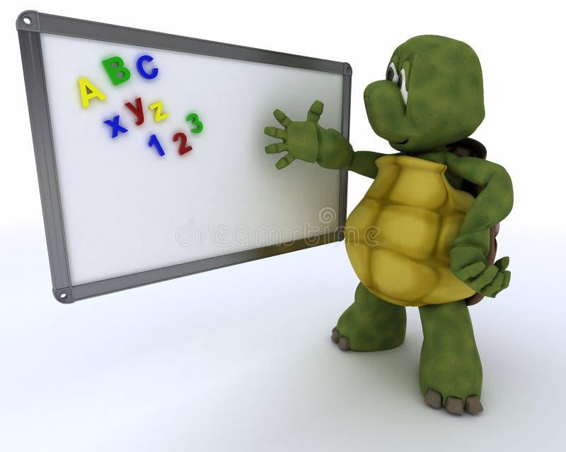 Schildpad met klaslokaal drywipe raad vector illustratie