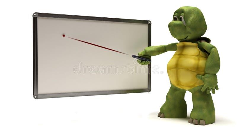 Schildpad met lege witte raad royalty-vrije illustratie