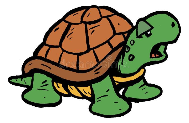 Schildpad/Schildpad royalty-vrije stock fotografie