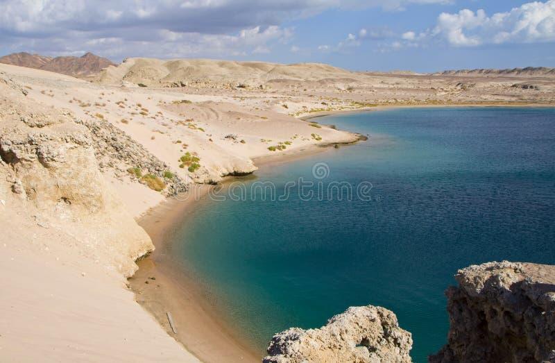 Schildpadbaai in Egypte royalty-vrije stock foto