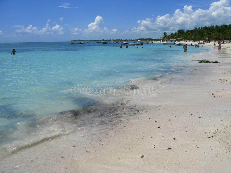 Schildpadstrand in playa del carmen royalty-vrije stock afbeeldingen