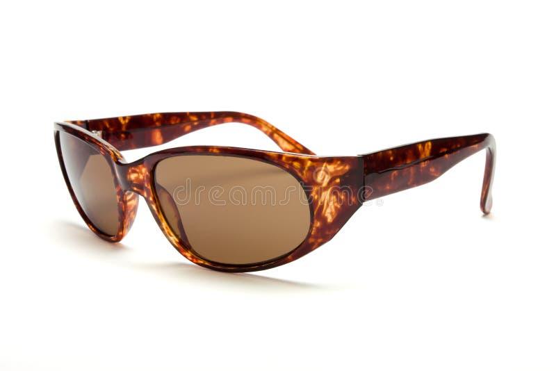 Schildpatt-Sonnenbrillen lizenzfreies stockbild
