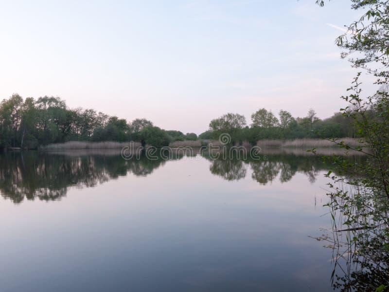 Schilfe im Abstand von diesem Fluss als den Sonnenuntergängen zum linken O lizenzfreie stockbilder
