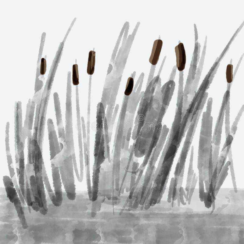 Schilfe, Sumpfgras im Wasser, abstrakte Zeichnung lizenzfreie abbildung