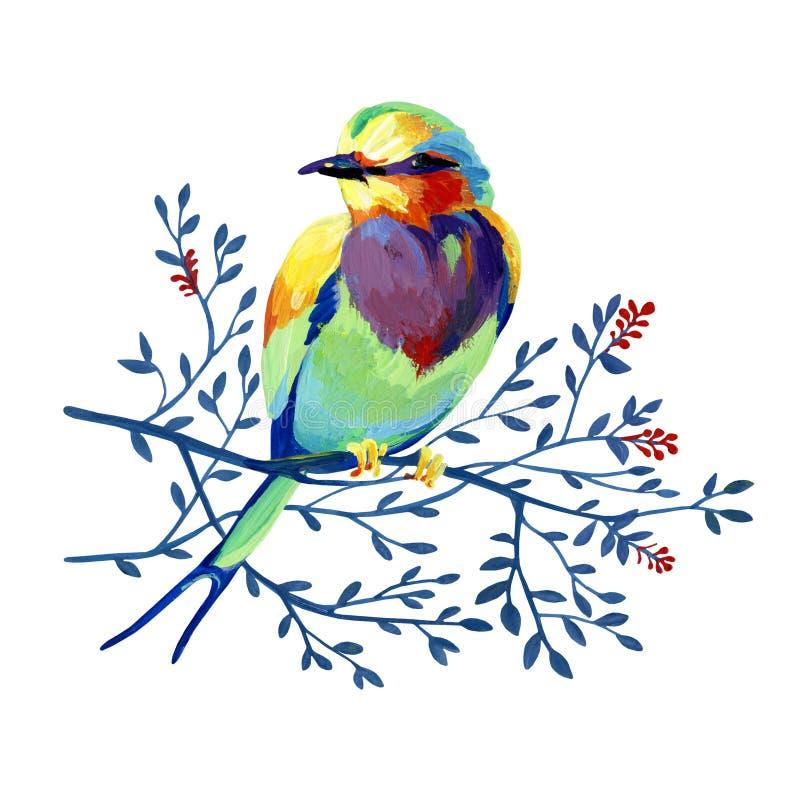 Schillernder Gartenvogel der Gouache auf einer Niederlassung lizenzfreie abbildung