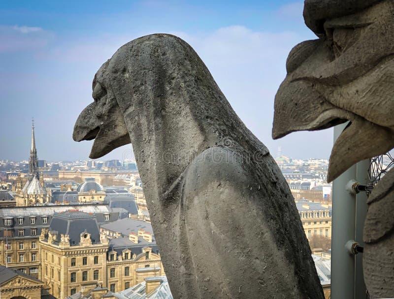 Schimären- und Wasserspeiersteinstatuen auf dem Turm von Notre Dame stockbilder
