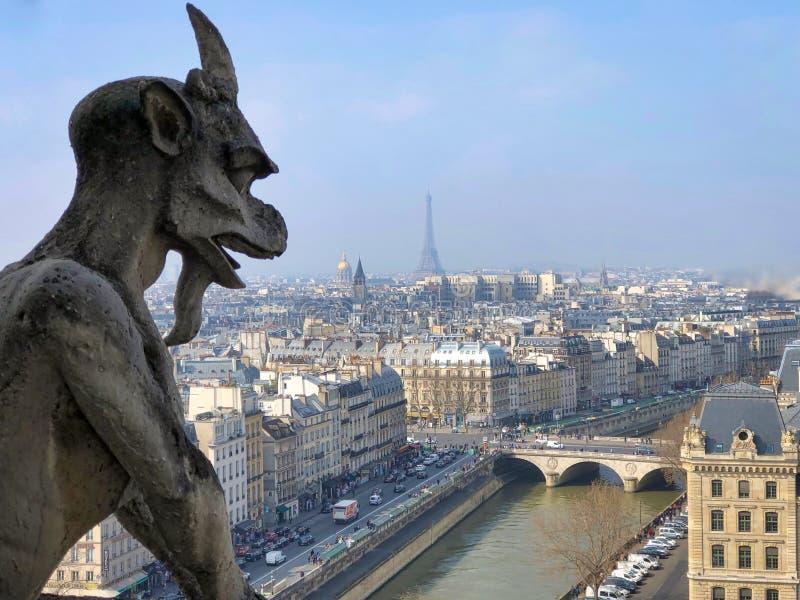 Schimärensteinstatue im Luftstadtbild von Notre Dame-Kathedrale stockfotografie