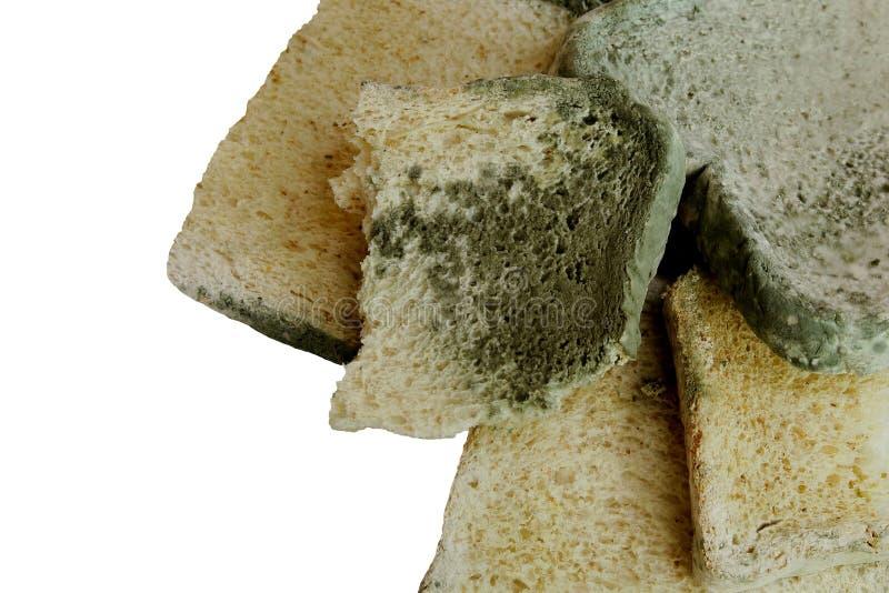 schimmelig auf Brot auf weißem Hintergrund lizenzfreies stockbild