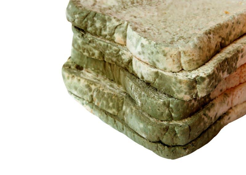 Schimmelig auf Brot auf weißem Hintergrund, ungenießbares Lebensmittel und lizenzfreies stockfoto