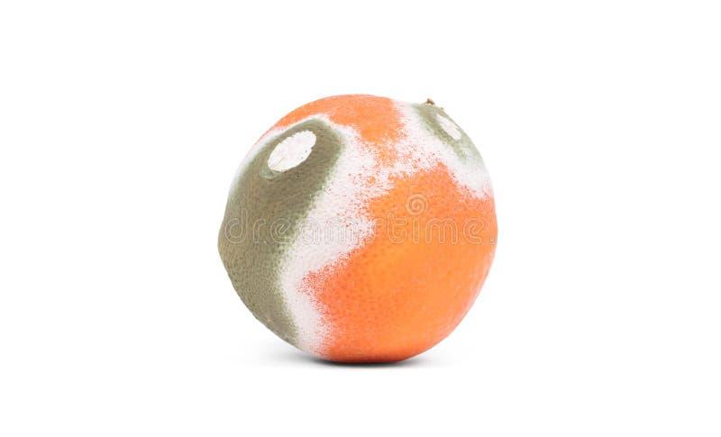 Schimmelige Orange lokalisiert lizenzfreies stockbild