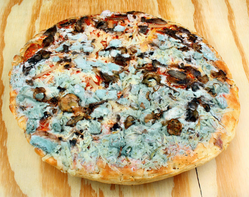 Schimmelige Pizza lizenzfreie stockfotos