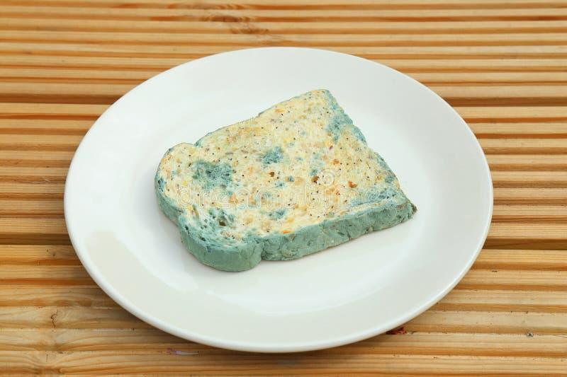 Schimmeliges Brot stockfoto