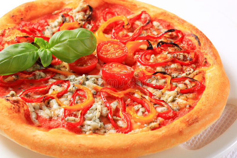 Schimmelkaaspizza royalty-vrije stock fotografie