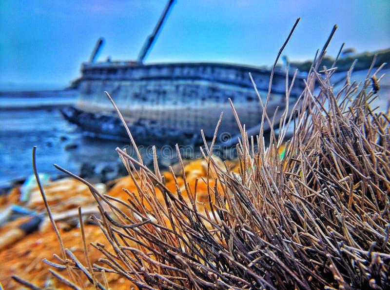 Schipwrak stock fotografie