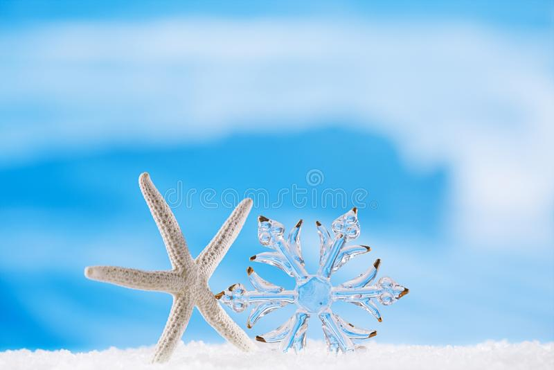 Schitter de sneeuwvlok van het Kerstmisglas met zeester stock afbeeldingen