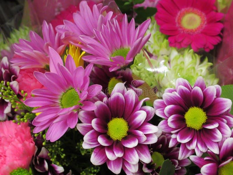 Schitterend Helder Kleurrijk Bloemenboeket royalty-vrije stock fotografie