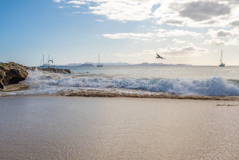 Schitterend strand op Playa Papagayo stock foto's