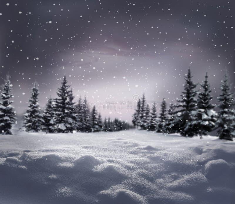 Schitterend winternachtlandschap met sneeuwbedekte bomen Happy Nieuwjaar-wenskaart met kopieerruimte royalty-vrije stock foto's