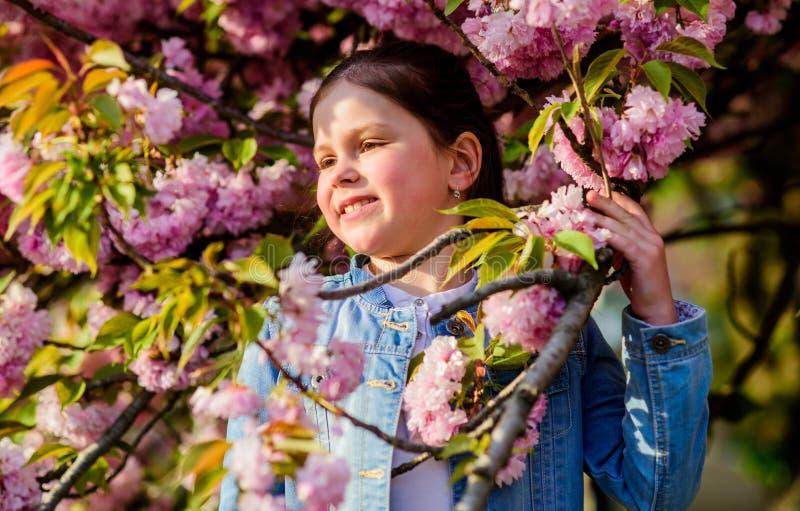 Schitterende bloem en vrouwelijke schoonheid r Sakuraboom het bloeien Park en Tuin Klein meisje royalty-vrije stock foto