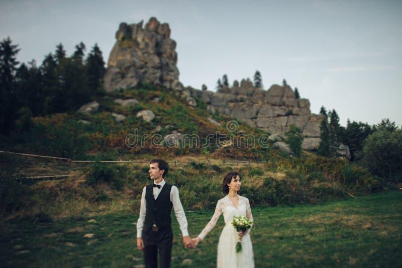Schitterende bruid en modieuze bruidegom die bij zonnig landschap lopen, wed stock afbeeldingen