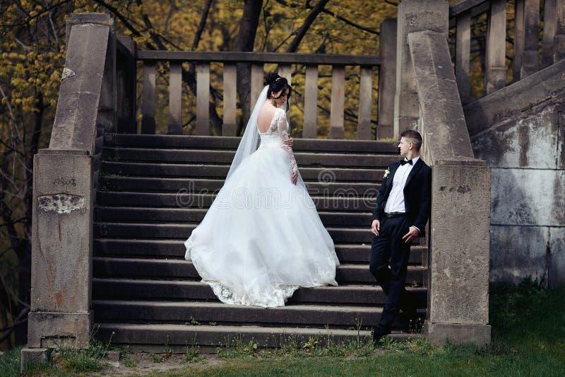 Schitterende donkerbruine bruid en het zekere bruidegom stellen op oude steen stock fotografie