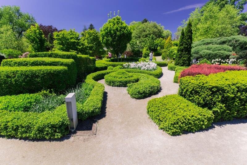 Schitterende het uitnodigen mening van botanisch tuinlandschap op zonnige de lentedag met mensen die op achtergrond lopen royalty-vrije stock afbeelding
