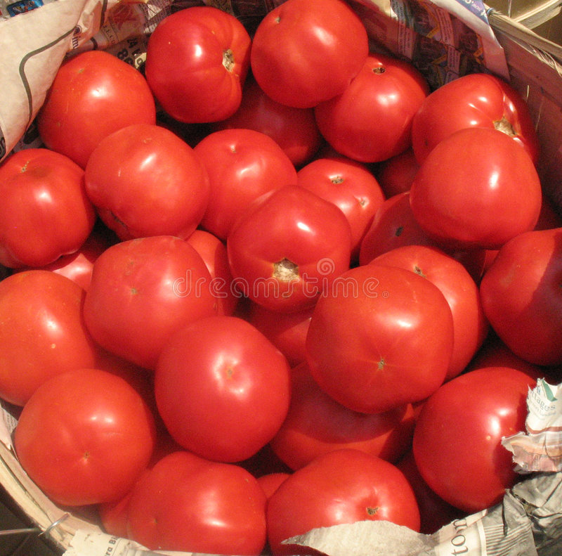Schitterende inlandse tomaten stock foto's