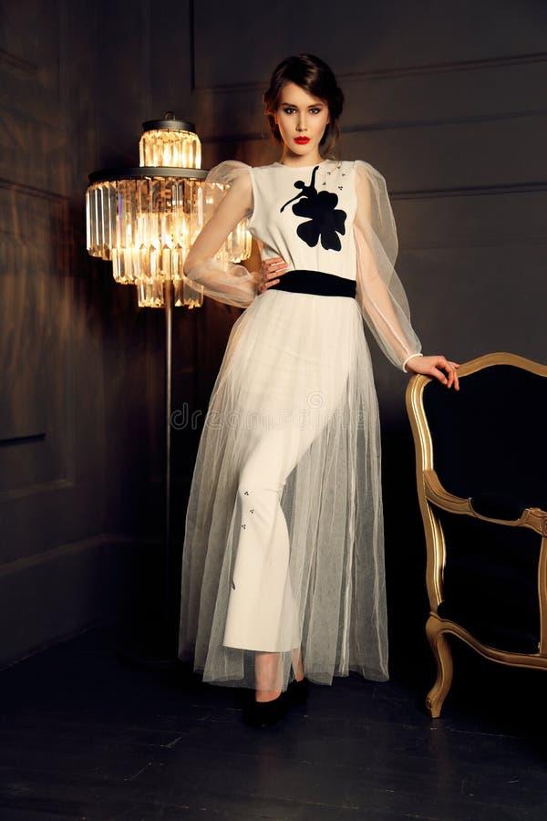 Schitterende vrouw met donkere haar en avondmake-up in het elegante kleding stellen in studio royalty-vrije stock foto's
