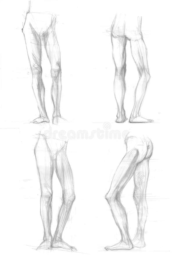 Schizzi di posizioni delle gambe illustrazione vettoriale