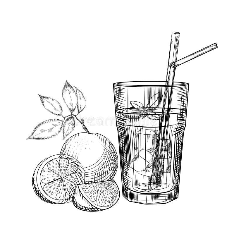 Schizzo arancio del cocktail di frutta Fetta arancio Immagine del succo degli agrumi illustrazione di stock