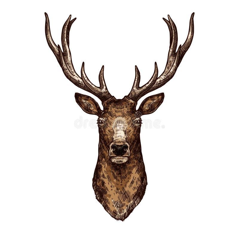 Schizzo dei cervi, degli alci o della renna dell'animale selvaggio della foresta illustrazione vettoriale