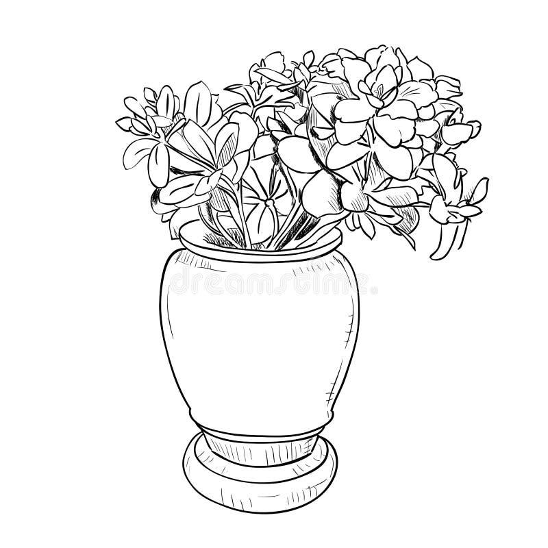 Schizzo del disegno di vettore del vaso con i fiori for Vaso di fiori disegno