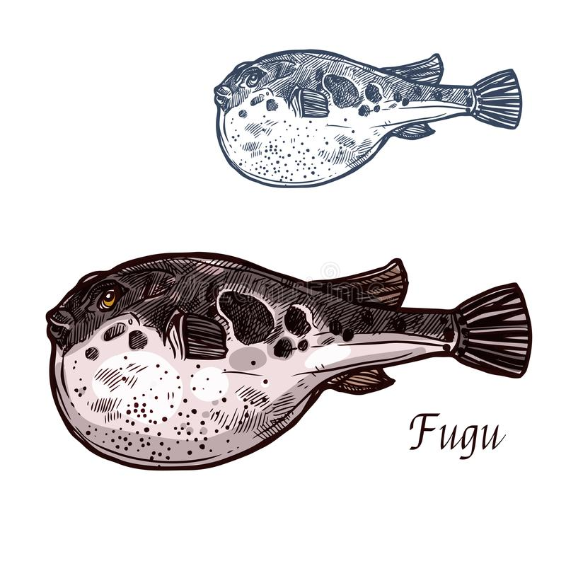 Schizzo del pesce di Fugu del pesce palla giapponese royalty illustrazione gratis