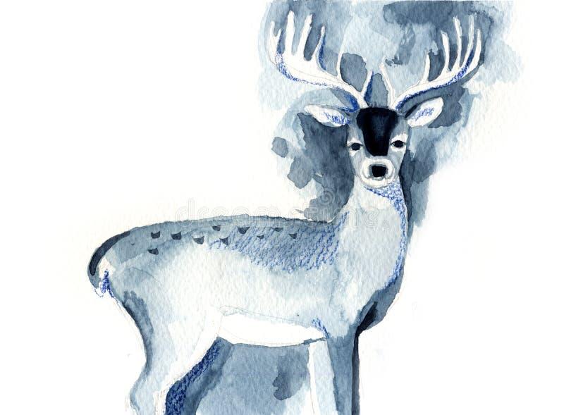 Schizzo dell'acquerello di bei cervi blu illustrazione vettoriale