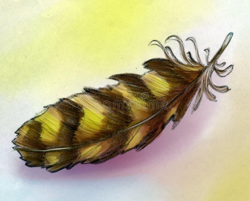 Schizzo della piuma di Eagle royalty illustrazione gratis