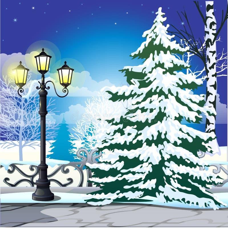 Schizzo di inverno sui precedenti dell'abete rosso nevoso e sulla lampada di via d'annata nel parco Campione del Natale e del nuo illustrazione vettoriale