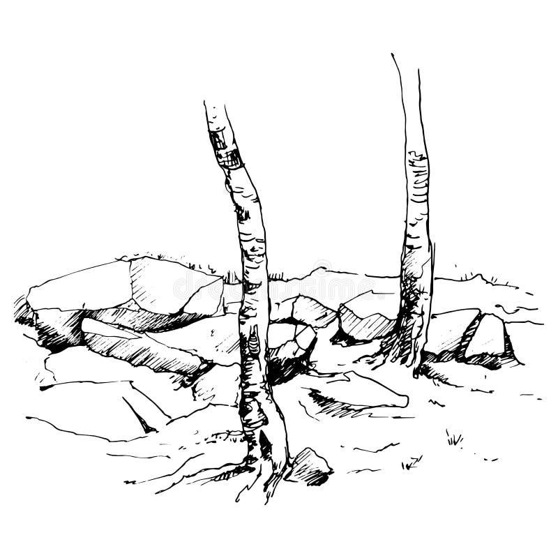 Schizzo di vettore dei tronchi e delle rocce di albero royalty illustrazione gratis