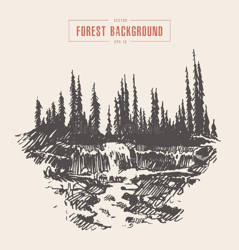 Schizzo disegnato foresta d'annata dell'abete della cascata del fiume illustrazione di stock