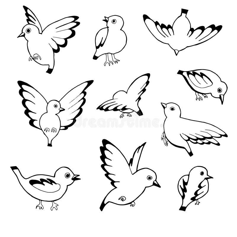 Schizzo disegnato a mano di vettore degli uccelli isolati su fondo bianco royalty illustrazione gratis